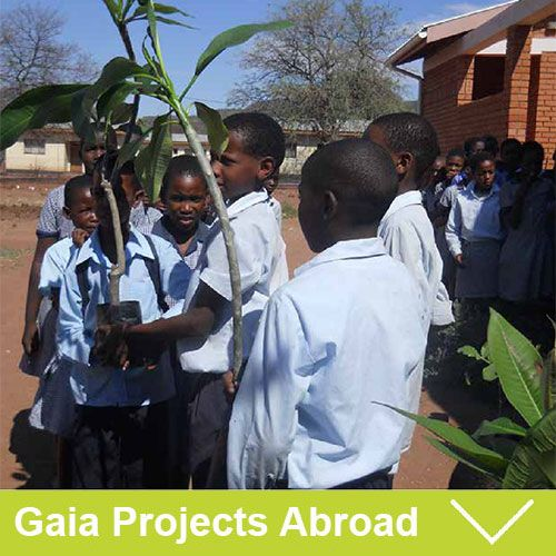 What do we support?